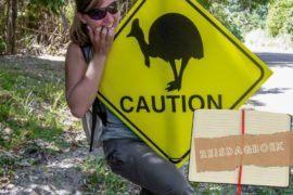 TROPISCHE VERRASSINGEN IN CAPE TRIBULATION AUSTRALIË    The Travel Tester