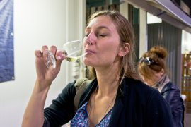 Hunter Valley Wine Tasting Tour Australia: Great Day Trip from Sydney!    The Travel Tester