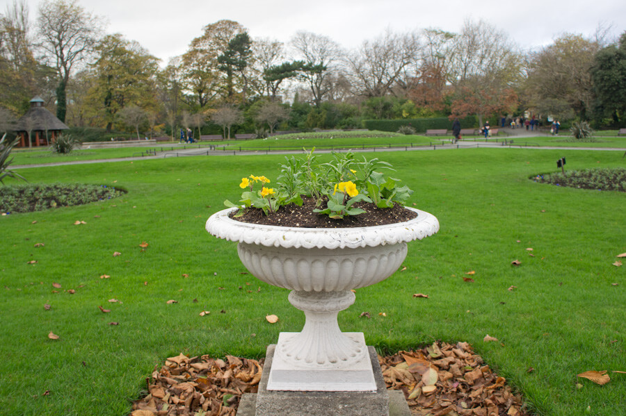 One day in Dublin? See the Highlights with these Tips!    City Guide by The Travel Tester    #CityGuide #Ireland #Dublin #VisitIreland #VisitDublin #24HGuide #Park