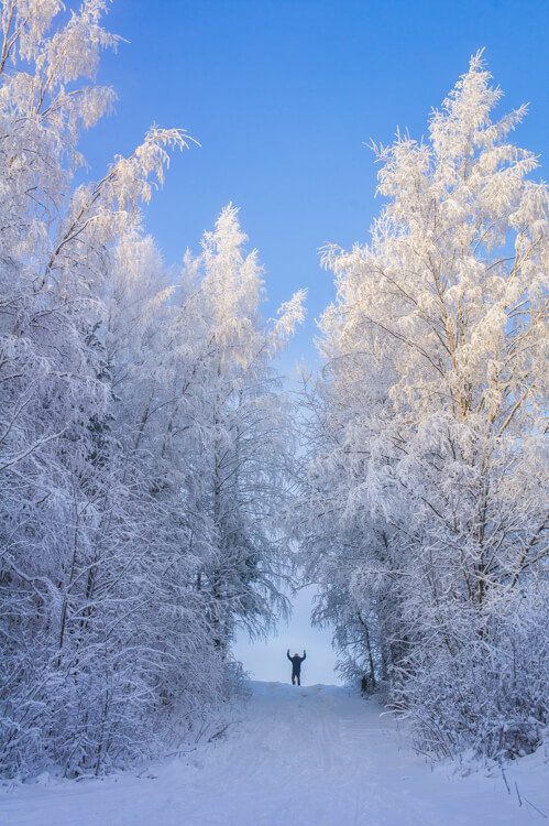 Travel to Seinäjoki Finland for Silence and Energizing Nature | The Travel Tester