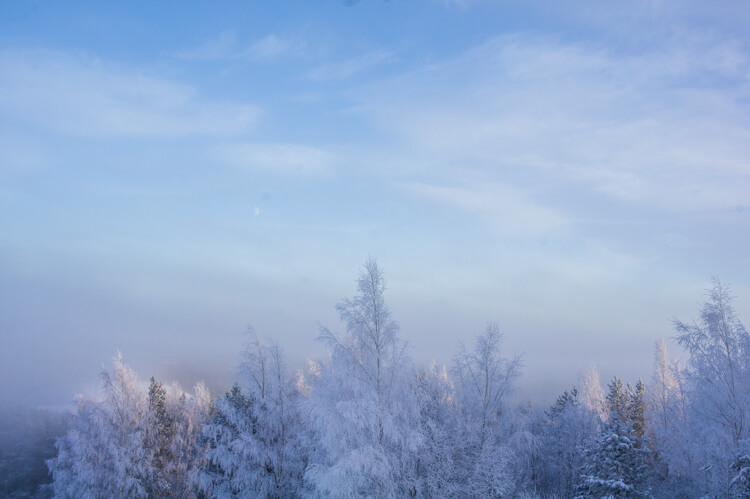 Travel to Seinäjoki Finland for Silence and Energizing Nature - Especially in Winter! || The Travel Tester