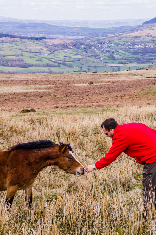 Brecon Beacons National Park: Ice Age Beauty in South Wales (Great Day Trip from Cardiff)    The Travel Tester