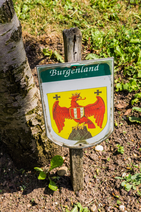 Discover Beauty around Neusiedlersee in Burgenland Austria Through 5 Activities | The Travel Tester