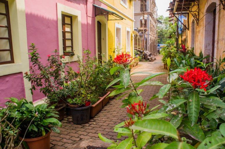 35 Doors and Windows in Panjim's Latin Quarter Fontainhas - Goa, India || The Travel Tester