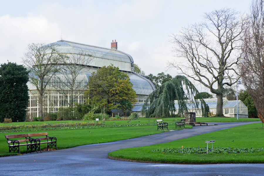 One day in Dublin? See the Highlights with these Tips!    City Guide by The Travel Tester    #CityGuide #Ireland #Dublin #VisitIreland #VisitDublin #24HGuide #Cemetery #Glasnevin #BotanicGarden #PalmHouse