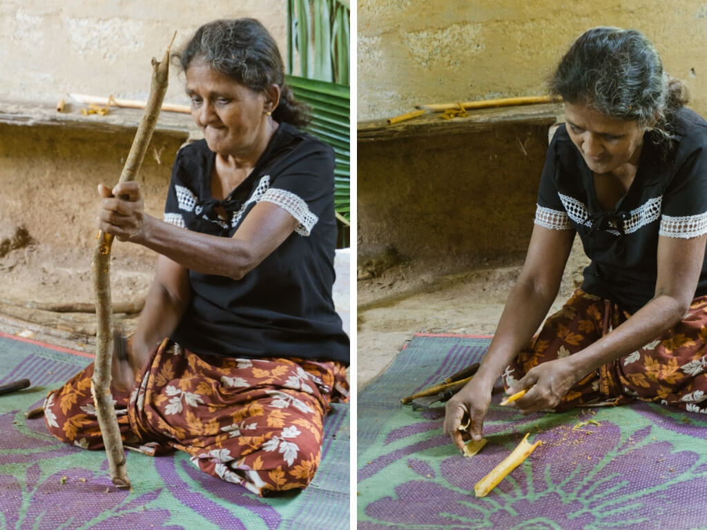 10 Best Things to Do in Sri Lanka that Will Make you Grow as a Person || The Travel Tester || #SriLanka #Asia #Travel #Cinnamon