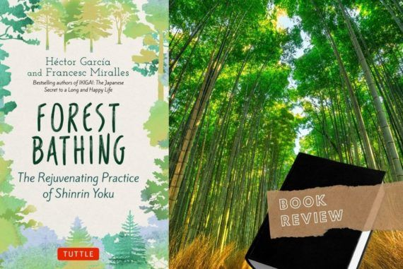 Proven Benefits of Japanese Shinrin-Yoku: Forest Bathing Book Review    The Travel Tester