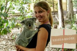 Lonepine Koala Sanctuary in Brisbane Australië || The Travel Tester