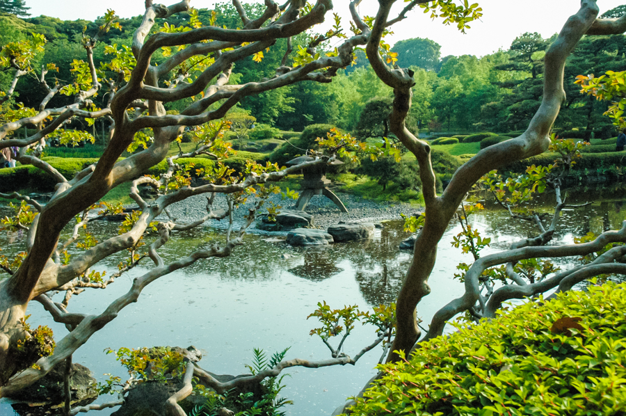 How to Plan Your Tokyo Japan Imperial Palace Gardens Visit || The Travel Tester